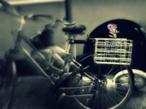 bike with basket of a flower